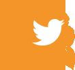 social-twitter-110